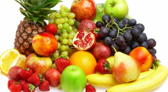 usaha buah dan bisnis buah